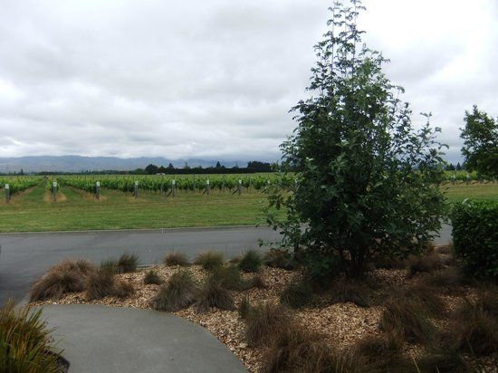 Marlborough Vintners Hotel: view from outside the vineyard suite