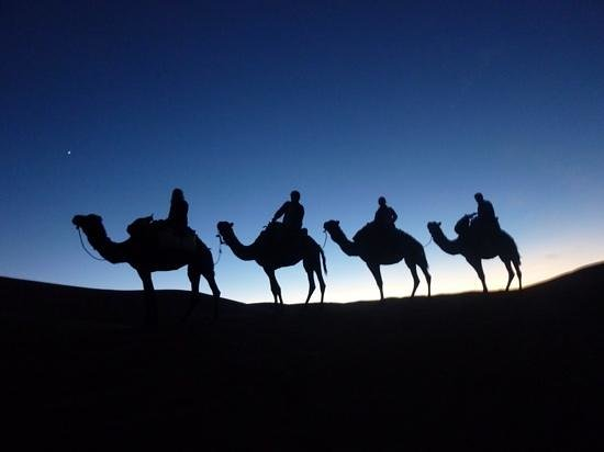 "Riad Nezha: our camel "" caravan"" in Sahara"