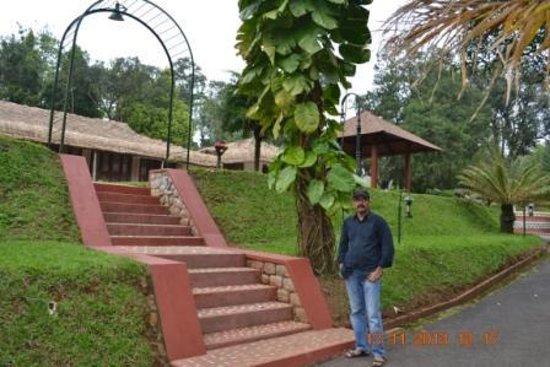 Carmelia Haven: At Carmelia Heavan_Thekkady