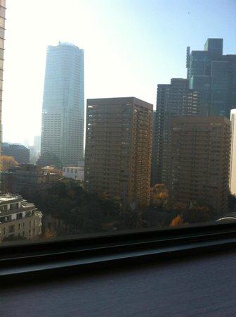 Ana Intercontinental Tokyo: View1