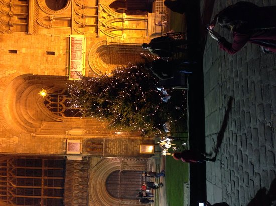 Lincoln Christmas Market: Christmas tree at West Front of Cathedral