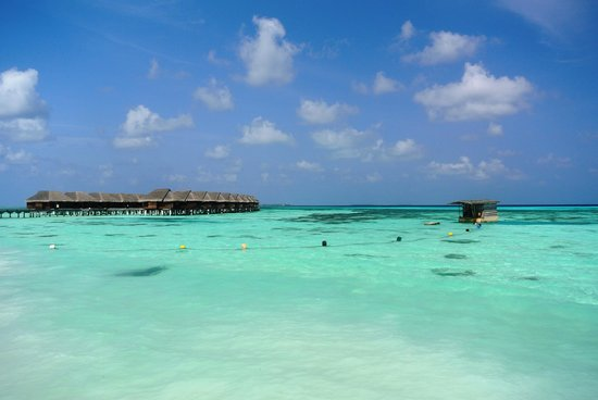 LUX* South Ari Atoll : Amazing