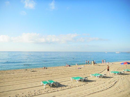 Evenia Montevista Hotel: Чистейшее Красное море, хороший пляж (мелкая галька).