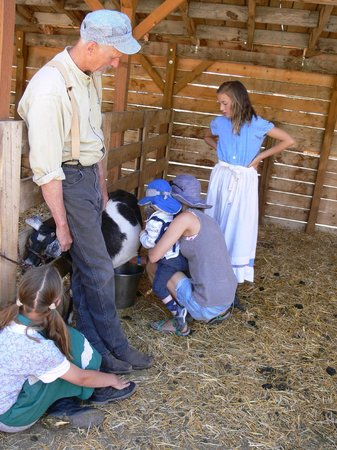 American West Heritage Center: Having a go at milking a goat