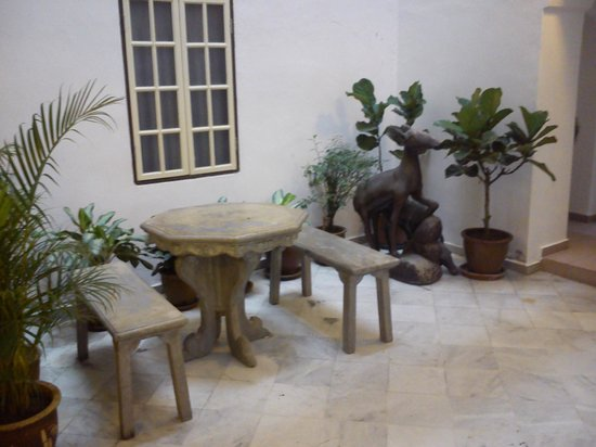 The Baba House : small garden down stair