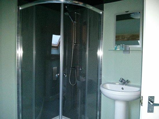 The Fountain Inn : Shower room