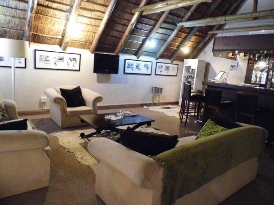 Safari Club: Bar