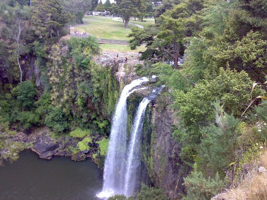 Whangarei Falls: View from the platform