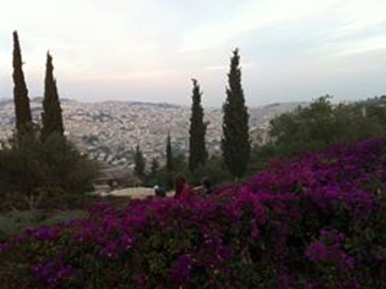 Eden Jerusalem Hotel: Haas Promenade,5 minutes by foot from our hotel!