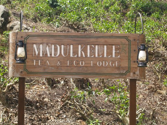 Madulkelle Tea and Eco Lodge: You know that you have arrived when you see this!