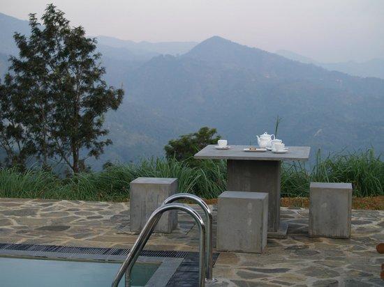 Madulkelle Tea and Eco Lodge: Tea by the pool