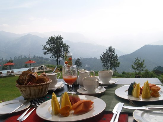 Madulkelle Tea and Eco Lodge: Breakfast on the patio.