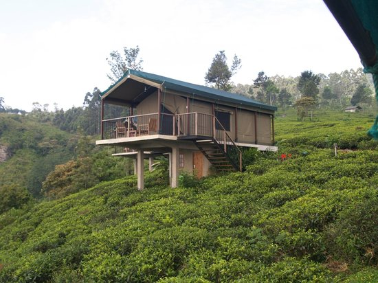 Madulkelle Tea and Eco Lodge: One of the lodges