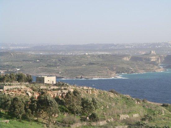 Malta5D : Busrundreise