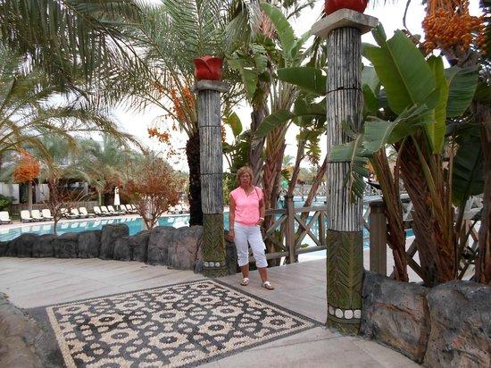 Royal Wings Hotel: zwembad en tuinen