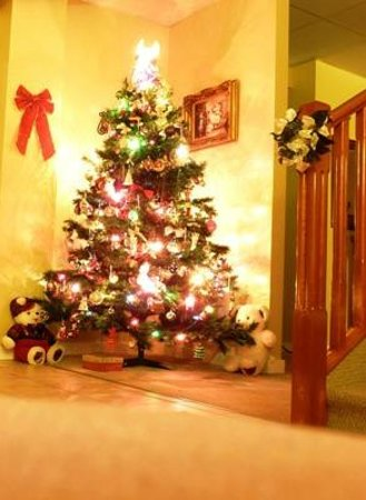 Villa Maria Country Inn Bed and Breakfast: Kerstboom