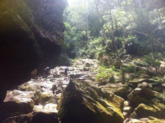 AfriCanyon River Adventures: The Ravine