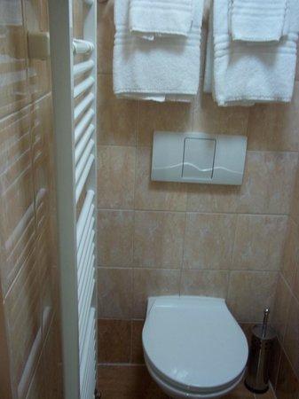 Pension U Lilie: bathroom