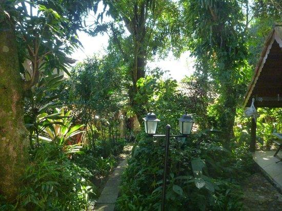 Aratinga Inn: Garden