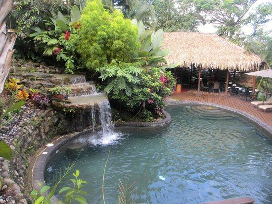 Tulemar Bungalows & Villas: Villas/Bungalow pool