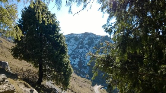 Dainkund Peak: View at the start of the trek