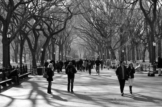 San Fermin B&B : Central Park
