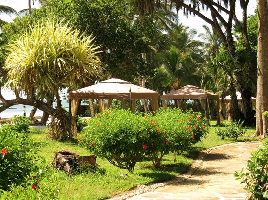 Ocean Village Club: Hotelanlage