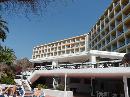 The New Algarb Hotel: hotel