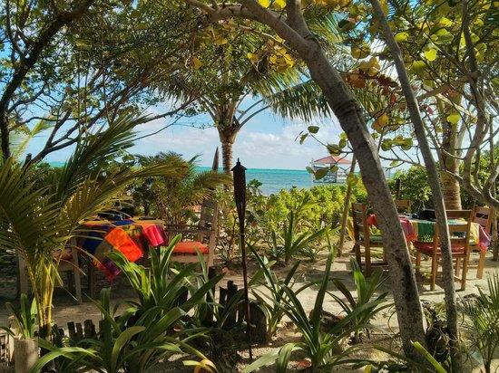 Aji Tapa Bar & Restaurant: Beautiful view from Aji