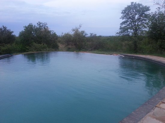Silonque Bush Estate: Infinite Swimming Pool
