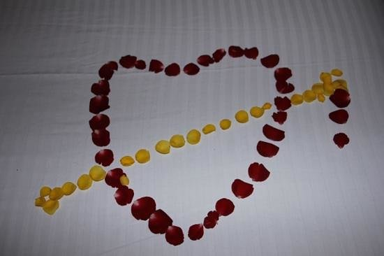 Hotel  Germanus : Beautiful rose petals on the bed!