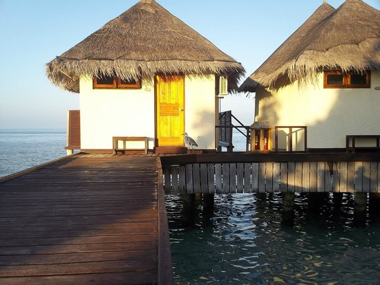 VOI Dhiggiri Resort: camere water