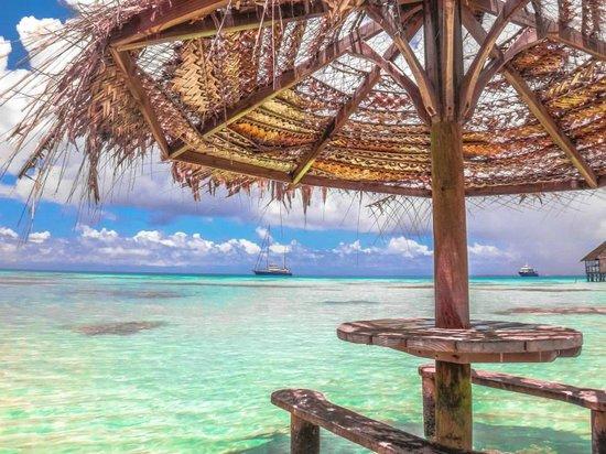 Pearl Havaiki: Havaiki Pearl grounds