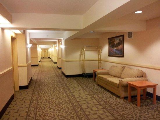 Days Inn - Orillia: hallway