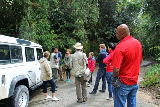 The Lakehouse, Cameron Highlands: Half-day tour, Mount Brinchang
