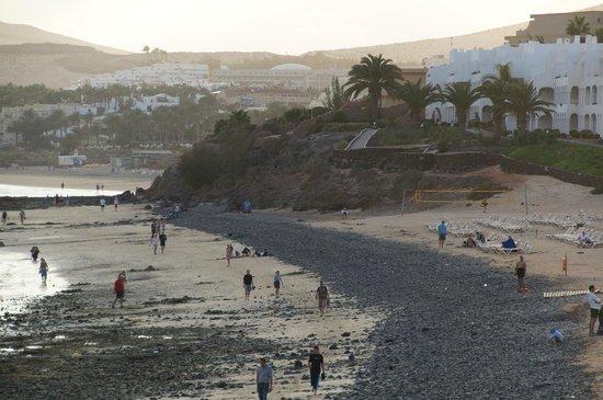Sotavento Beach Club: Der Strand am Hotel ..leider gar nicht schön