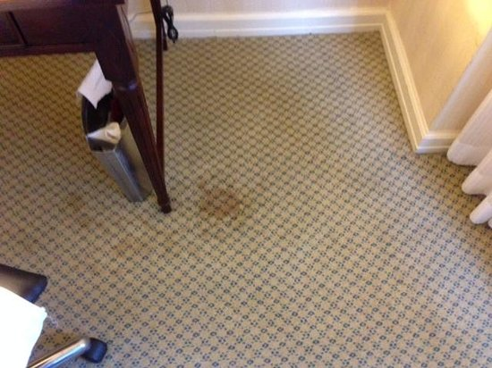New York Hilton Midtown: Carpet in Room