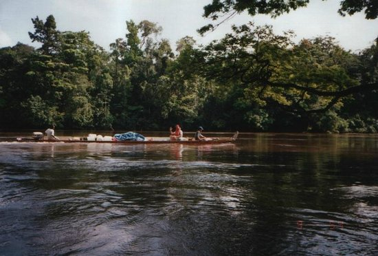 Kourou River: Heading up river to a carbet for the week-end.