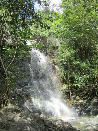 Reef Bay Trail: Waterfall created from recent rain