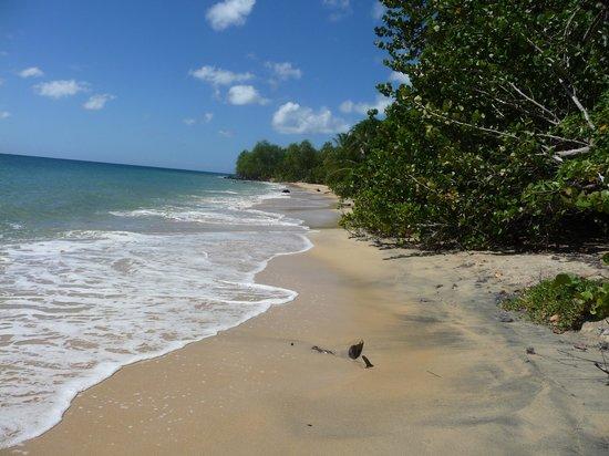 Pierre & Vacances Village Club Sainte Luce : plage à deux pas de la résidence