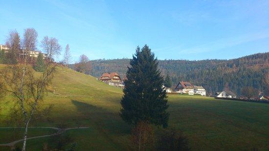 Hotel Engel Obertal: La vue