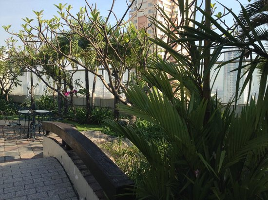 Pan Pacific Manila : Japanese Garden on the Roof of the Hotel