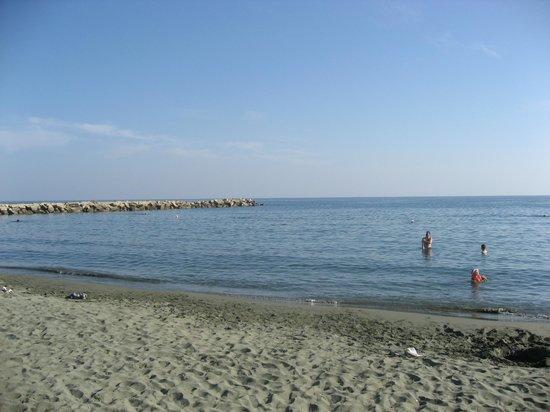 Mediterranean Beach Hotel: Beach