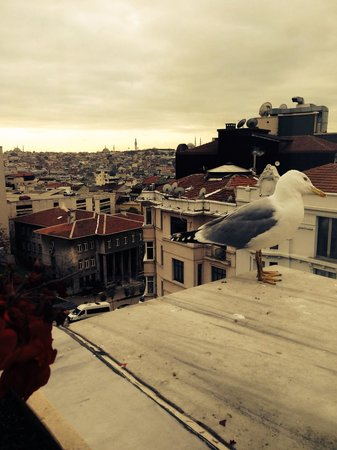 Galata Antique Hotel: While Eating Breakfast