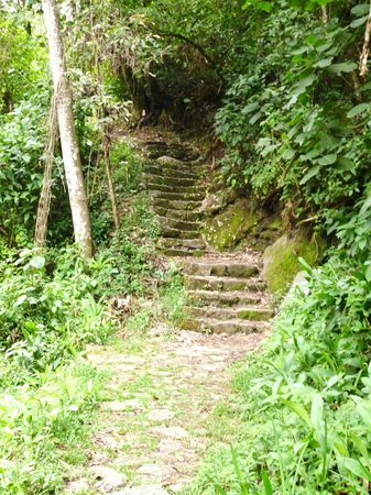 Putucusi Mountain: Mais escadas, até aí tudo bem.