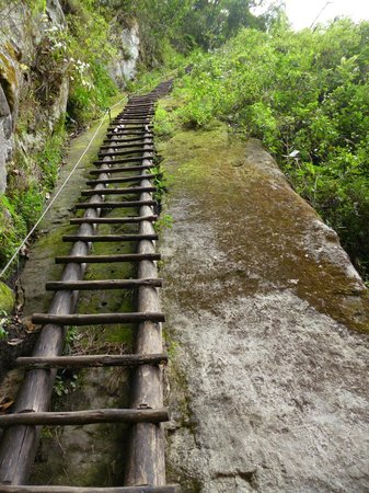 Putucusi Mountain : Não consegui, tive medo. Super íngreme. Estava só, e se acontecesse algo comigo?