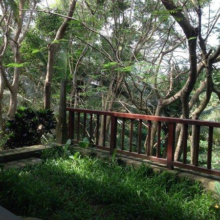 Niraamaya Retreats: Von der Zimmer-Terrasse Rock Garden 4