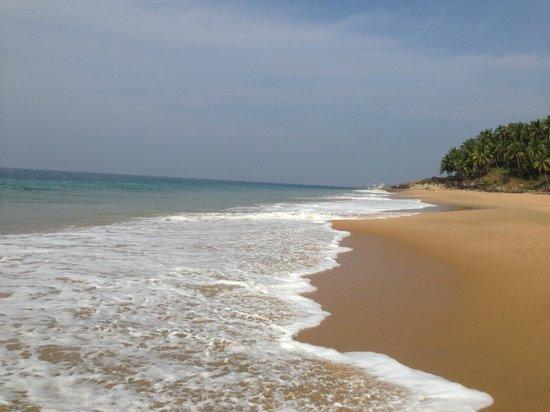 Niraamaya Retreats: Wunderschöne Strand am Indischen (Arabischen) Meer