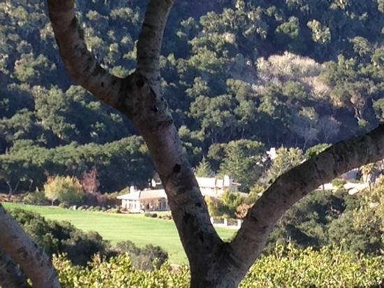 Carmel Valley Ranch: View from room.