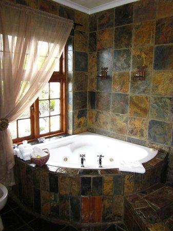 Agulhas Country Lodge: Badewanne mit Meerblick